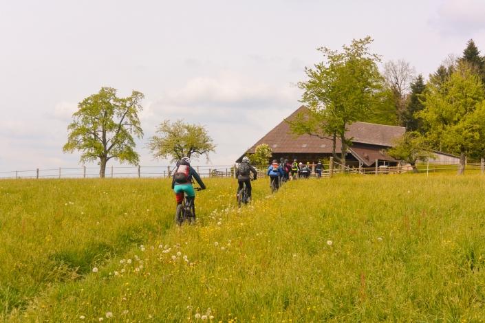 Emmental während E Mountainbike Kurs erkunden