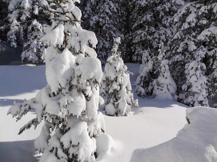 Geführte Schneeschuhtour Landschaft