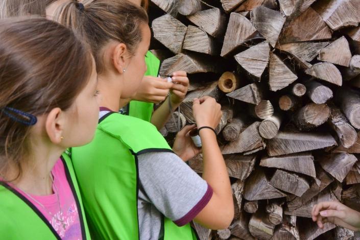 Rätsel Geocaching Schulreise Sommer
